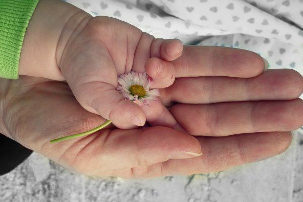 mains bébé adulte fleur
